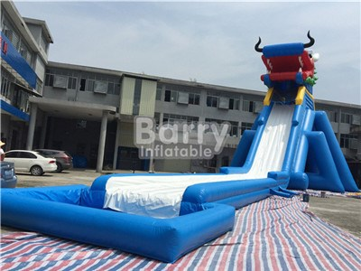 Dragon Head Large Inflatable Water Slides For Sale China Factory BY-GS-027